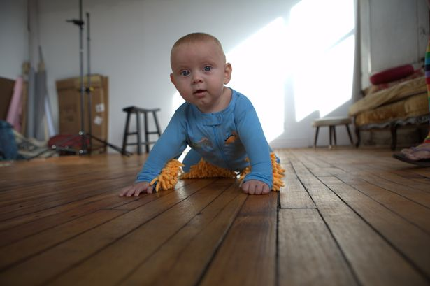 The_baby_mop1414294