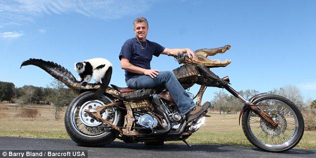 Gatorbike2