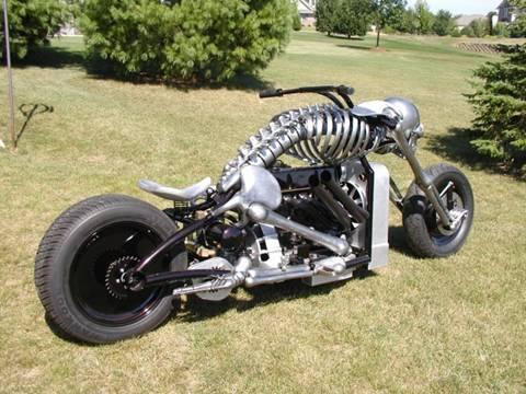 Skeleton_motor01